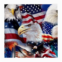 United States Of America Images Independence Day Medium Glasses Cloth (2 Side)