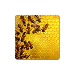 Honey Honeycomb Square Magnet