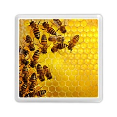 Honey Honeycomb Memory Card Reader (square)