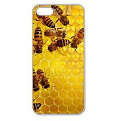 Honey Honeycomb Apple Seamless Iphone 5 Case (clear)
