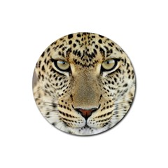Leopard Face Rubber Coaster (round)