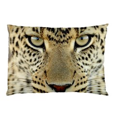 Leopard Face Pillow Case
