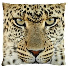 Leopard Face Large Cushion Case (one Side)