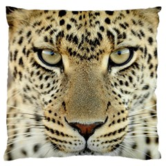 Leopard Face Large Flano Cushion Case (two Sides)