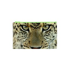 Leopard Face Cosmetic Bag (xs)