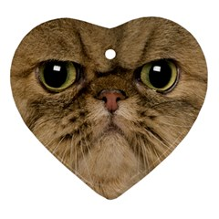 Cute Persian Catface In Closeup Ornament (heart)