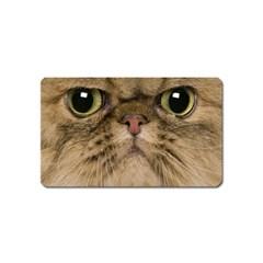 Cute Persian Catface In Closeup Magnet (name Card)