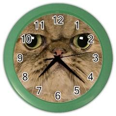 Cute Persian Catface In Closeup Color Wall Clocks