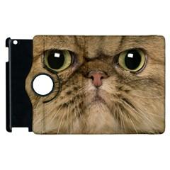 Cute Persian Catface In Closeup Apple Ipad 3/4 Flip 360 Case