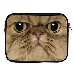 Cute Persian Catface In Closeup Apple Ipad 2/3/4 Zipper Cases