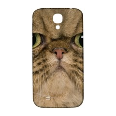 Cute Persian Catface In Closeup Samsung Galaxy S4 I9500/i9505  Hardshell Back Case