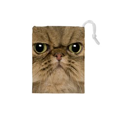 Cute Persian Catface In Closeup Drawstring Pouches (small)