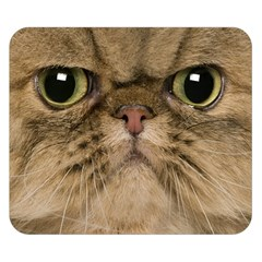Cute Persian Catface In Closeup Double Sided Flano Blanket (small)