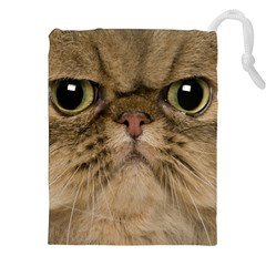 Cute Persian Catface In Closeup Drawstring Pouches (xxl)