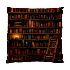 Books Library Standard Cushion Case (two Sides)