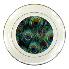 Feathers Art Peacock Sheets Patterns Porcelain Plates