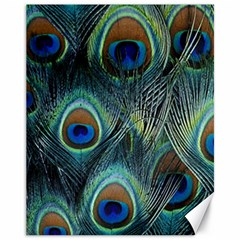 Feathers Art Peacock Sheets Patterns Canvas 11  X 14