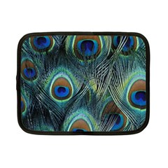 Feathers Art Peacock Sheets Patterns Netbook Case (small)