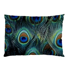 Feathers Art Peacock Sheets Patterns Pillow Case