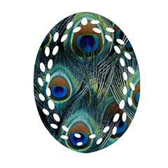 Feathers Art Peacock Sheets Patterns Ornament (oval Filigree)
