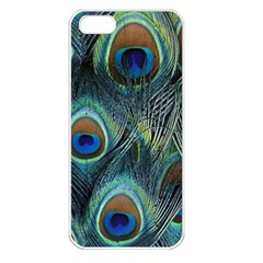 Feathers Art Peacock Sheets Patterns Apple Iphone 5 Seamless Case (white)