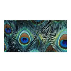 Feathers Art Peacock Sheets Patterns Satin Wrap
