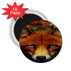 Fox 2 25  Magnets (10 Pack)