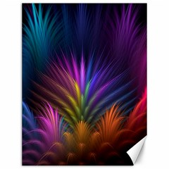 Colored Rays Symmetry Feather Art Canvas 12  X 16