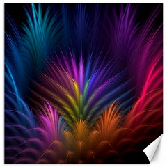 Colored Rays Symmetry Feather Art Canvas 20  X 20