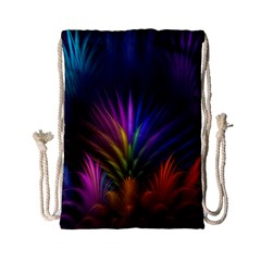 Colored Rays Symmetry Feather Art Drawstring Bag (small)
