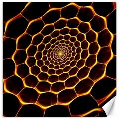 Honeycomb Art Canvas 20  X 20
