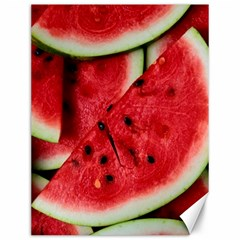 Fresh Watermelon Slices Texture Canvas 12  X 16