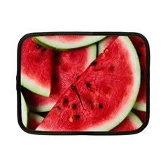 Fresh Watermelon Slices Texture Netbook Case (small)