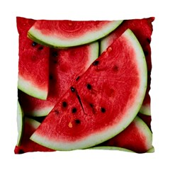 Fresh Watermelon Slices Texture Standard Cushion Case (two Sides)