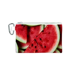 Fresh Watermelon Slices Texture Canvas Cosmetic Bag (s)