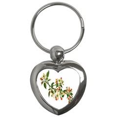 Apple Branch Deciduous Fruit Key Chains (heart)