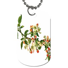 Apple Branch Deciduous Fruit Dog Tag (two Sides)