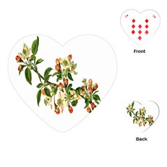 Apple Branch Deciduous Fruit Playing Cards (heart)