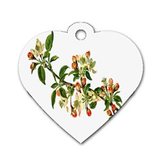 Apple Branch Deciduous Fruit Dog Tag Heart (one Side)