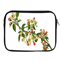 Apple Branch Deciduous Fruit Apple Ipad 2/3/4 Zipper Cases