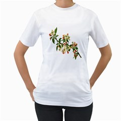 Apple Branch Deciduous Fruit Women s T Shirt (white)