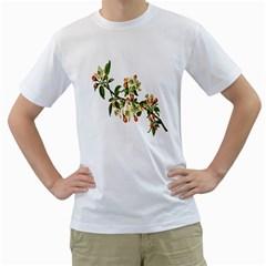 Apple Branch Deciduous Fruit Men s T Shirt (white)