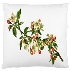 Apple Branch Deciduous Fruit Large Flano Cushion Case (two Sides)
