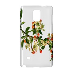 Apple Branch Deciduous Fruit Samsung Galaxy Note 4 Hardshell Case