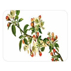 Apple Branch Deciduous Fruit Double Sided Flano Blanket (large)