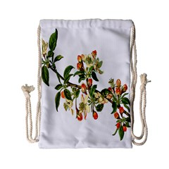Apple Branch Deciduous Fruit Drawstring Bag (small)
