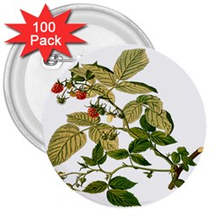 Berries Berry Food Fruit Herbal 3  Buttons (100 Pack)