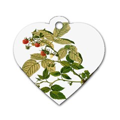 Berries Berry Food Fruit Herbal Dog Tag Heart (two Sides)