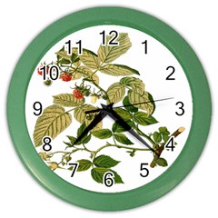 Berries Berry Food Fruit Herbal Color Wall Clocks