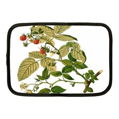 Berries Berry Food Fruit Herbal Netbook Case (medium)